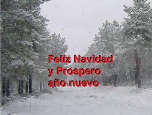 Nieve 001